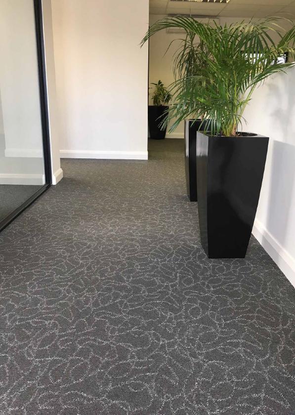 Image of Port Elizabeth Commercial Flooring Carpeting